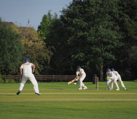 Frequently Asked Questions Cricket You Should Know