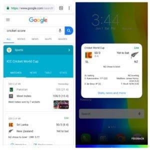 Google Search Cricket