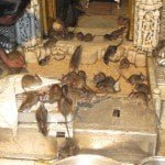 Rats in Karni Temple