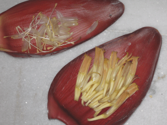Mochar Ghonto Recipe : Dish made from Banana flower